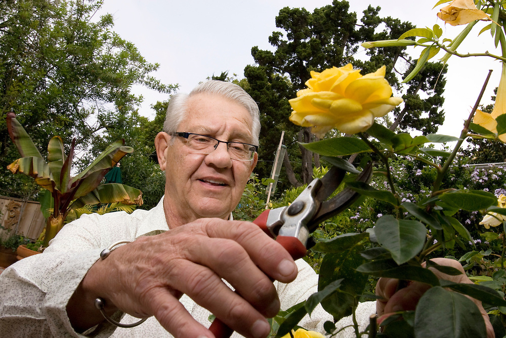 Alex Karras, a feared player in the NFL with a reputation for toughness, now resides in Southern California and has an interest in gardening.
