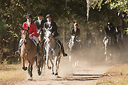 Riders follow the hounds during the first hunt of the season at Middleton Place Plantation November 27, 2016 in Charleston, South Carolina. Fox hunting in Charleston is a drag hunt using a scented cloth to simulate a fox and no animals are injured.