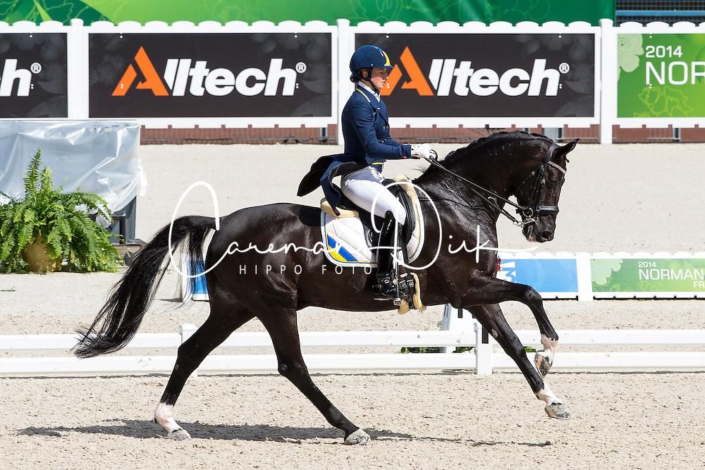 Inna Logutenkova, (UKR), Don Gregorius - Grand Prix Team Competition Dressage - Alltech FEI World Equestrian Games&trade; 2014 - Normandy, France.<br /> &copy; Hippo Foto Team - Leanjo de Koster<br /> 25/06/14