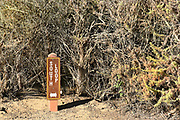 San Joaquin Marsh Trail Sign