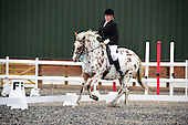 18 - 15th Oct - Dressage
