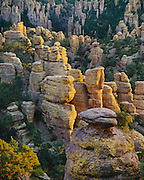 0103-1005 ~ Copyright: George H.H. Huey ~ Standing rocks [rhyolite formation] at sunset.  Heart-of-Rocks area.  Chiricahua National Monument, Arizona.