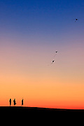 Flying kites on Jockey's Ridge at twilight. I