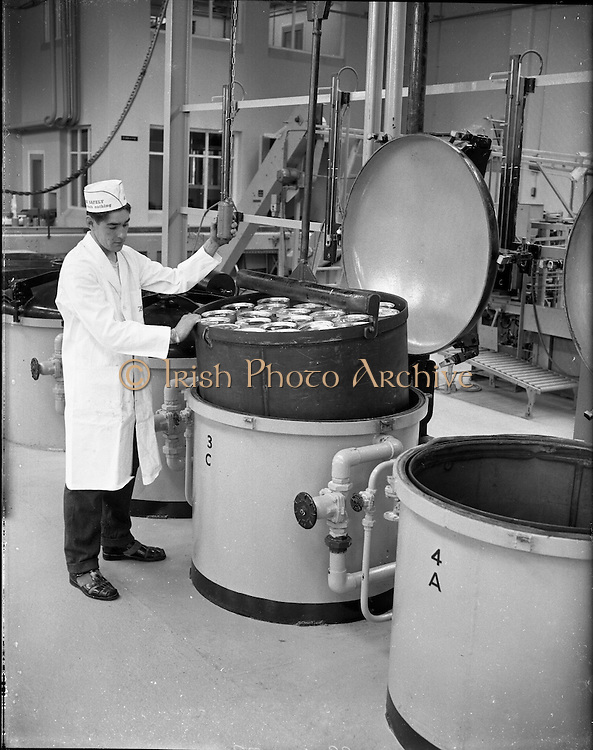 Borden Plant Factory and Interiors at Mallow, Co. Cork..01.08.1961