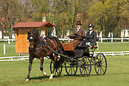Draft Horse with two unknown drivers at the yearly International Horse Carriage Dressage competition in Kladruby n. Labem The Czech Republic, Europe. Spring 2018