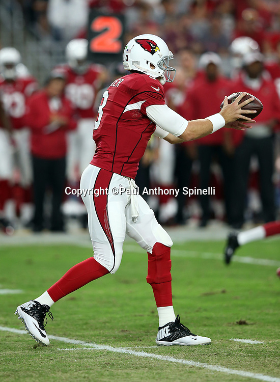 Arizona Cardinals quarterback Carson Palmer (3) catches a shotgun snap during the 2015 NFL preseason football game against the Kansas City Chiefs on Saturday, Aug. 15, 2015 in Glendale, Ariz. The Chiefs won the game 34-19. (©Paul Anthony Spinelli)