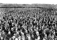 H447<br />