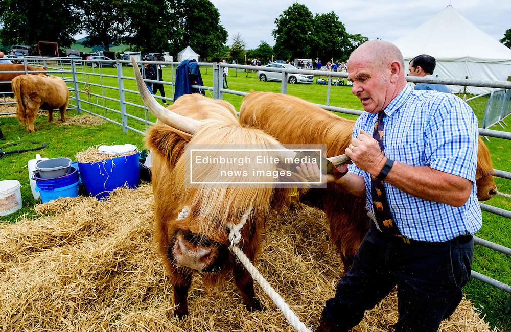 Biggar, South Lanarkshire, Scotland 23 July 2016<br /> <br /> Preparing highland cattle for showing.<br /> <br /> (c) Andrew Wilson   Edinburgh Elite media