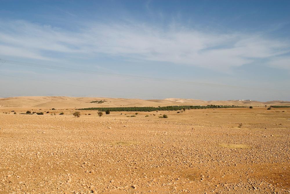 Bananeraie d'une colonie juive près de Jéricho en Territoires occupés.