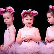 2013, Wellington Dance & Performing Arts Academy