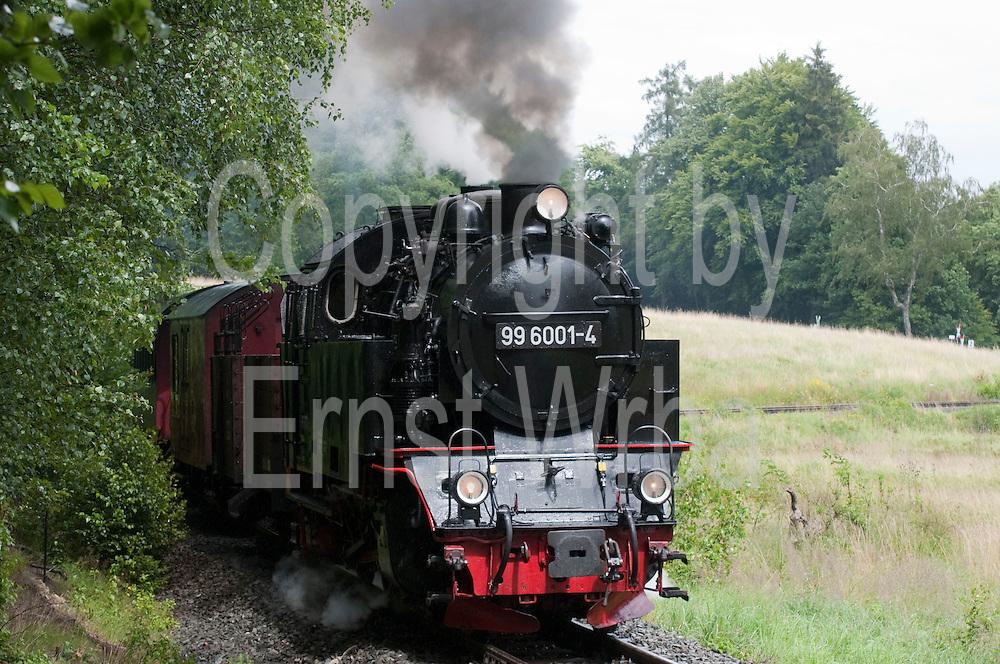 historische Dampfeisenbahn Selketalbahn, HSB, Harzer Schmalspurbahn, Selketal, Harz, Sachsen-Anhalt, Deutschland | historical steamrailway Selketalbahn, Selke valley, Harz, Saxony-Anhalt, Germany