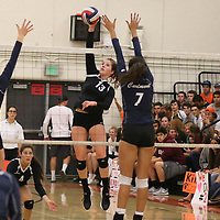 (Photograph by Bill Gerth for SVCN) Los Gatos #13 Alexandra Stracey  spikes the ball vs Carlmont in a CCS Division 1 Semi Final Girls Volleyball Game at Los Gatos High School, Los Gatos CA on 11/9/16.  (Los Gatos defeated Carlmont 3-0, 25-21, 25-17, 25-16)
