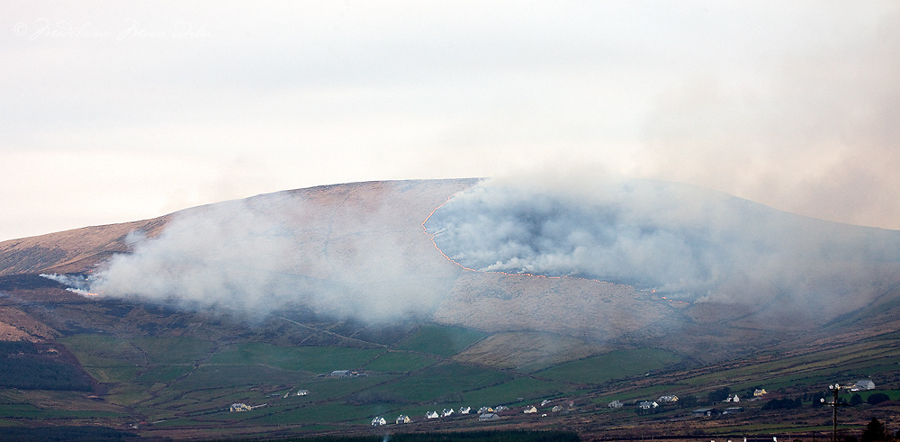 Farmers in Kerry burning their fields March 2011 / County Kerry, Ireland