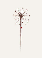 Beautiful dandelion seeds with a little lady bug climbing the stem. Minimalistic abstract oriental Zen style sumi-e painting based design illustration. Isolated brown flower on light beige background.