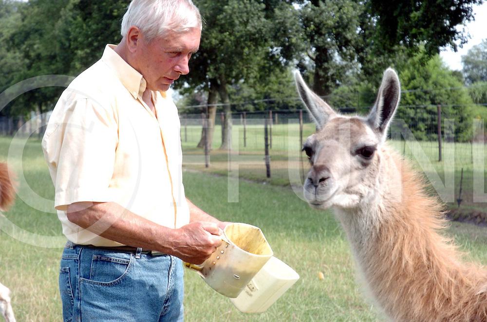 060720, nieuwleusen,ned<br /> Heer ten Cate voert zijn exotische dieren.<br /> foto: Lama<br /> fotografie frank uijlenbroek&copy;2006 frank uijlenbroek