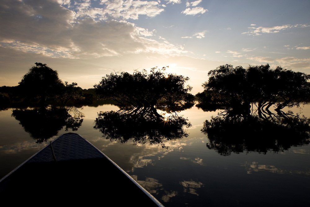 Boat tour of Anavilhanas Ecological Station. The Anavilhanas is the largest river archipelago in the world with over 400 islands in the Rio Negro branch of the Amazon River, near Novo Airao , Amazonas, Brazil, August 18, 2008..Daniel Beltra/Greenpeace
