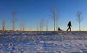 Sergey Bondair of Leonia pulls his son Sasha, 2, on a wooden sled through Overpeck County Park.  Bondair, who grew up in Siberia, enjoys the freezing weather.