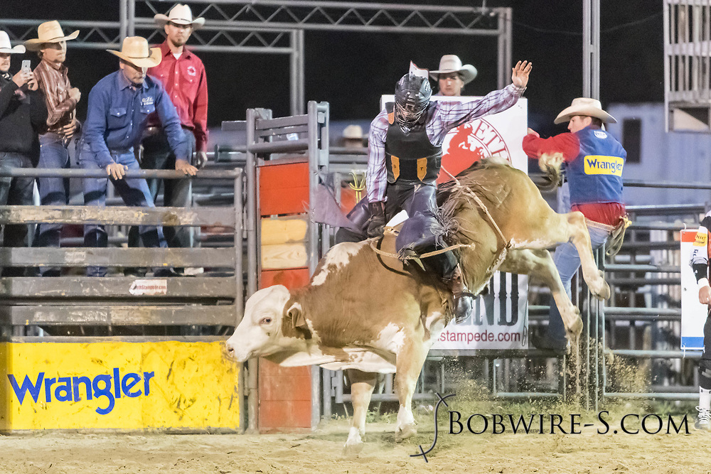 Bull rider Dylan Tyner rides Summit Pro Rodeo's Golden Bear in the second performance of the Elizabeth Stampede on Saturday, June 2, 2018.