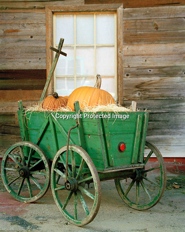 "Small green wagon on rustic porch loaded with pumpkins. NOTE: Click ""Shopping Cart"" icon for available sizes and prices. If a ""Purchase this image"" screen opens, click arrow on it. Doing so does not constitute making a purchase. To purchase, additional steps are required."