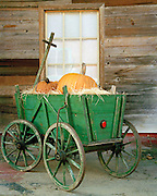 """Small green wagon on rustic porch loaded with pumpkins. NOTE: Click """"Shopping Cart"""" icon for available sizes and prices. If a """"Purchase this image"""" screen opens, click arrow on it. Doing so does not constitute making a purchase. To purchase, additional steps are required."""