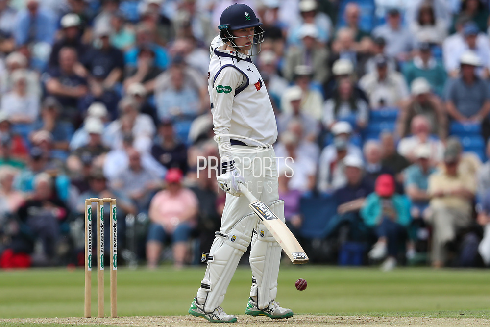 James Logan of Yorkshire is rapped on the fingers during the Specsavers County Champ Div 1 match between Yorkshire County Cricket Club and Warwickshire County Cricket Club at York Cricket Club, York, United Kingdom on 18 June 2019.