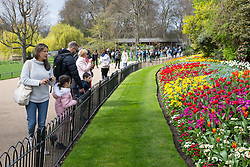 © Licensed to London News Pictures. 16/04/2018. London, UK. Families look at brightly coloured flowers in the sunshine as the UK is set to experience warm weather of up to 25 degrees celsius this week. Photo credit : Tom Nicholson/LNP