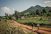 Malaria: The Last Stand