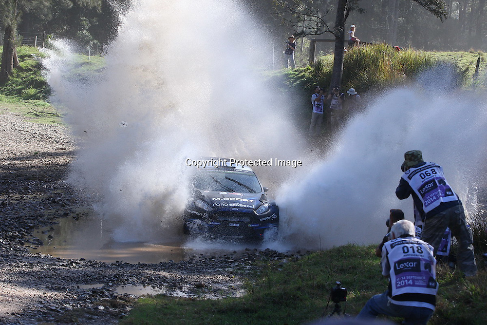 Elfyn Evans (GBR) during Special Stage 15, Rally Australia - Round 10 of the FIA World Rally Championship, Day 3, 14 September 2014. Photo: Alan McDonald/www.photosport.co.nz