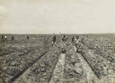 Het graven van geulen voor de aanplant van suikerriet op de terreinen van de suikerfabriek Petaroekan bij Pemalang. 1928 - 1932