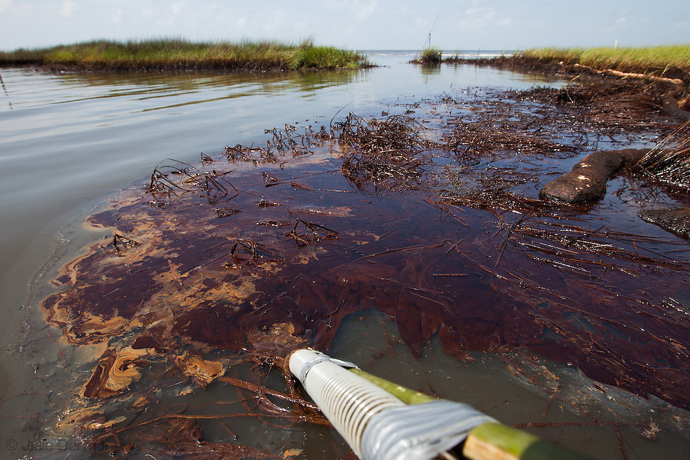Marilyn Marky , part of the  Plaquemines Parish Inland Waterway Strike Force, vacuuming BP oil off the surface of Barataria Bay