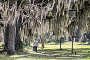 A man walks a dog along the ancient Live Oak trees covered in Spanish moss at the Fort Frederica National Monument, the original colonial settlement in St. Simons Island, Georgia. Fort Frederica was established by Georgia founder James Oglethorpe in 1736 to serve as a bulwark against the Spanish settlements in Florida,