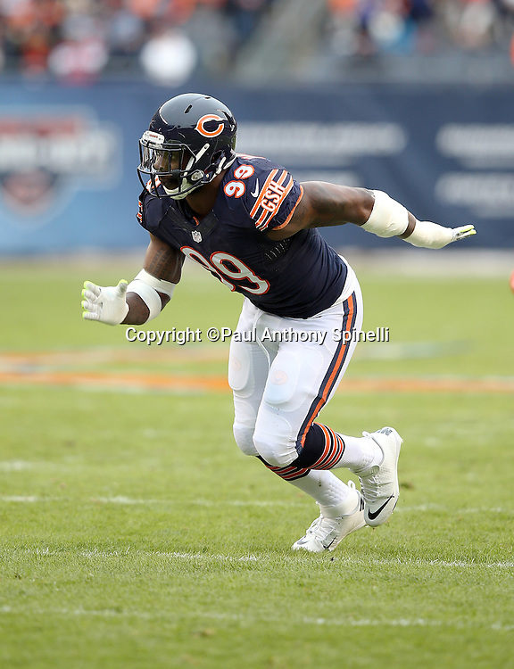 Chicago Bears linebacker Lamarr Houston (99) chases the action during the NFL week 17 regular season football game against the Detroit Lions on Sunday, Jan. 3, 2016 in Chicago. The Lions won the game 24-20. (©Paul Anthony Spinelli)
