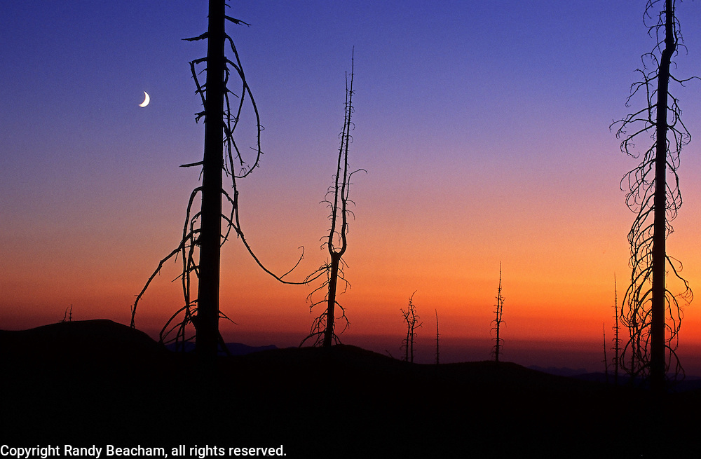 Mount Baldy at twilight. Purcell Mountains in the Kootenai National Forest, Montana