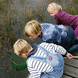 Nature education, natuurbeleving