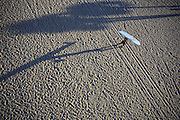 Surfer carrying his board over head casting long shadow in afternoon sand... Aerial view