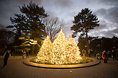 16.11.20 - NYBG Holiday Tree Lighting