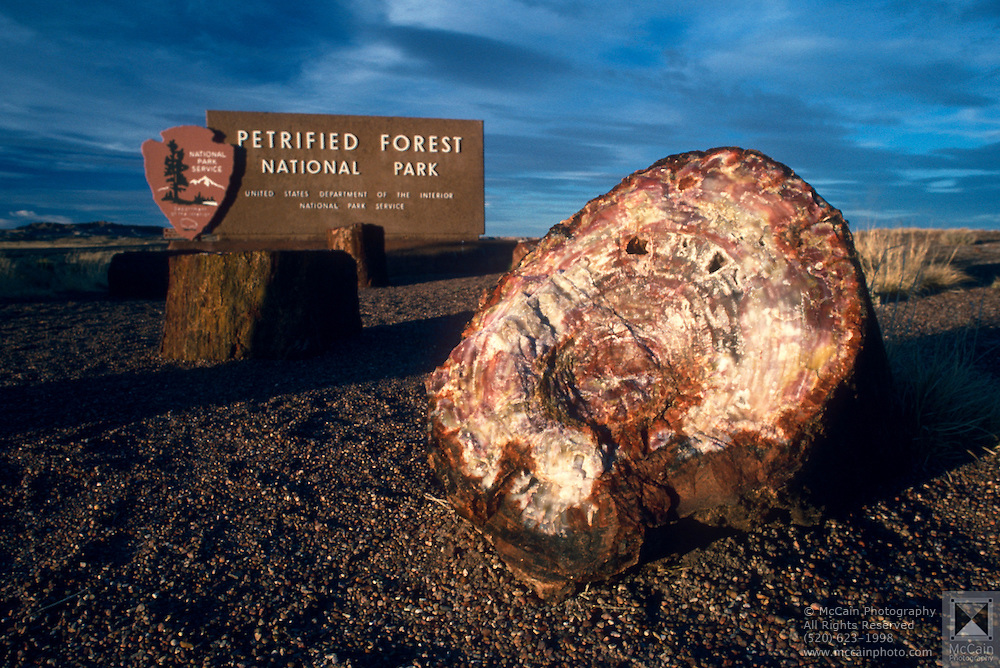 Entrance sign to Petrified Forest National park at sunset. ..Subject photograph(s) are copyright Edward McCain. All rights are reserved except those specifically granted by Edward McCain in writing prior to publication...McCain Photography.211 S 4th Avenue.Tucson, AZ 85701-2103.(520) 623-1998.mobile: (520) 990-0999.fax: (520) 623-1190.http://www.mccainphoto.com.edward@mccainphoto.com.