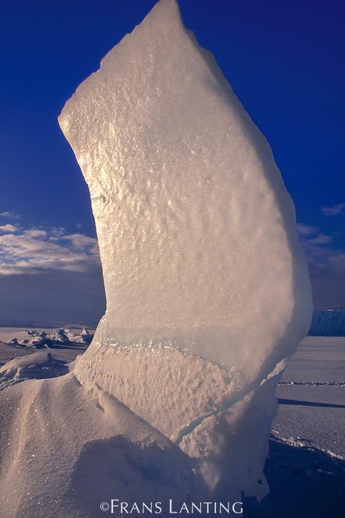 Ice formation at pressure ridge, Weddell Sea, Antarctica