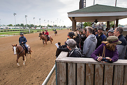 Fans came out to see Derby 142 hopeful on the track for training, Wednesday, May 04, 2016 at Churchill Downs in Louisville.