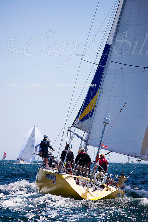 Dogsled sailing at the start of the 2012 Newport Bermuda Race.