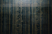 The names of 504 victims of the My Lai Massacre carved in marble at the museum in Quang Ngai, Vietnam.