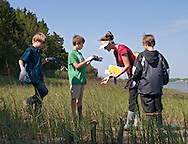 Students from Sullivan's Island Elementary School monitor Spartina Grass density on Jeremy Island. The island is one of the original oyster reef construction sites in South Carolina. By using a simple quadrant tool, students can count the amount of grass in a square foot.