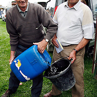 James O' Connor and Andrew Pearce make sure their horse Ferrybridge in well hydrated before the Derby at the strand racing in Kilkee on Sunday.<br />