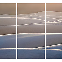 White Sands triptych: Sold.<br />