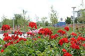 Gardner Rose Garden