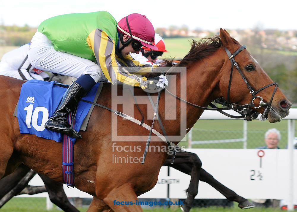 Iggy and jockey Nathan Evans win The Go Racing In Yorkshire Future Stars Apprentice Handicap Stakes at Pontefract Races, Pontefract<br /> Picture by Alan Wright/Focus Images Ltd 07733 196489<br /> 29/04/2015