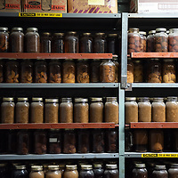 Jars of candy and other sugary items are kept in the kitchen  cellar of the Aggressive Christianity Missions Training Corps (ACMTC) headquarters in Fence Lake Feb. 27th, 2019.