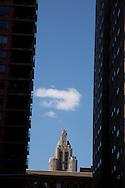 New York university district