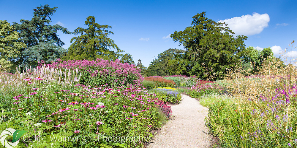 Photographed in mid-August a path sweeps through lush borders of perennials and grasses at Trentham Gardens, Stoke-on-Trent, Staffordshire.