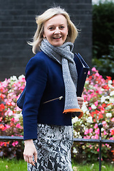 Downing Street, London, October 11th 2016. Government ministers leave the first post-conference cabinet meeting. PICTURED: Justice Secretary and Lord Chancellor Liz Truss